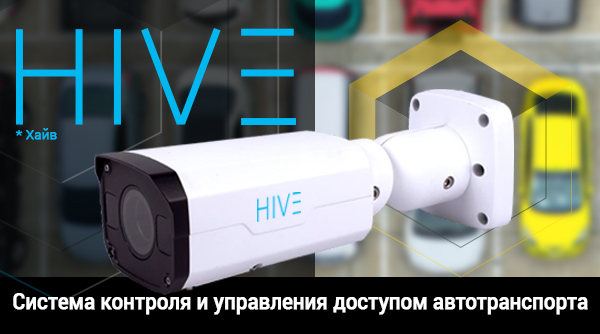 hive anrp